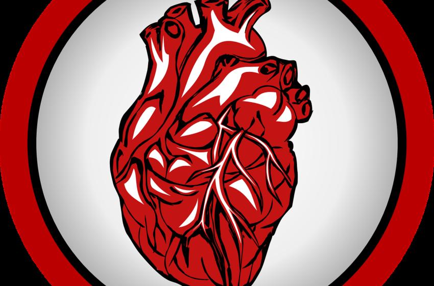Crucial facts about organ transplantation